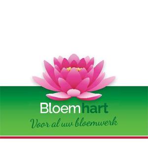 Bloemhart